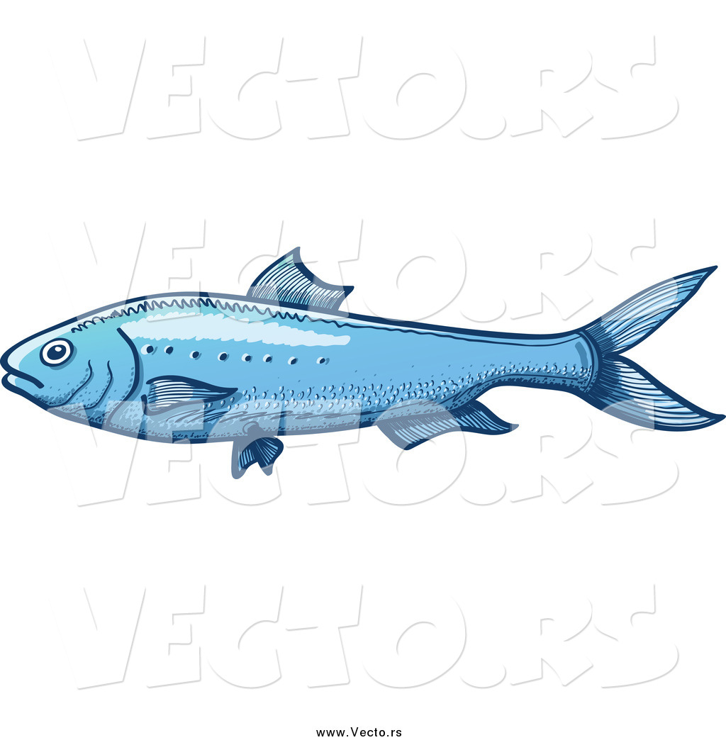 High resolution royalty free vector graphic of a blue sardine fish ...: vecto.rs/design/vector-of-a-blue-sardine-fish-by-zooco-42300