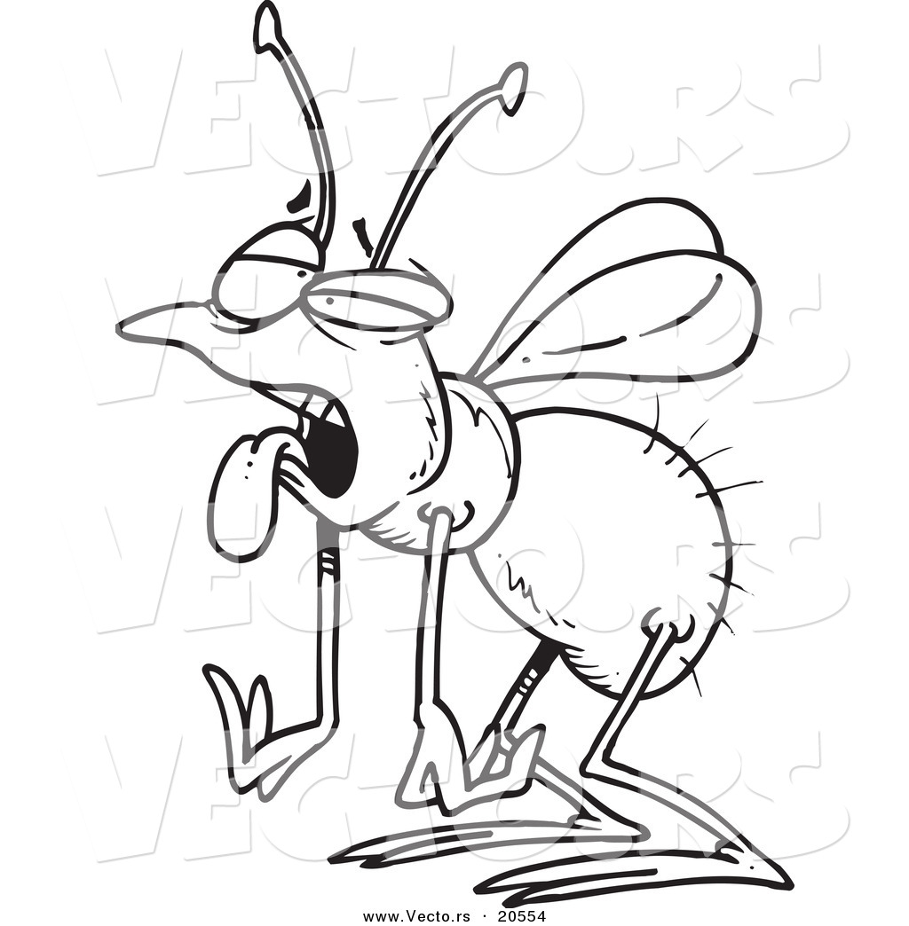 house fly coloring pages - photo #36