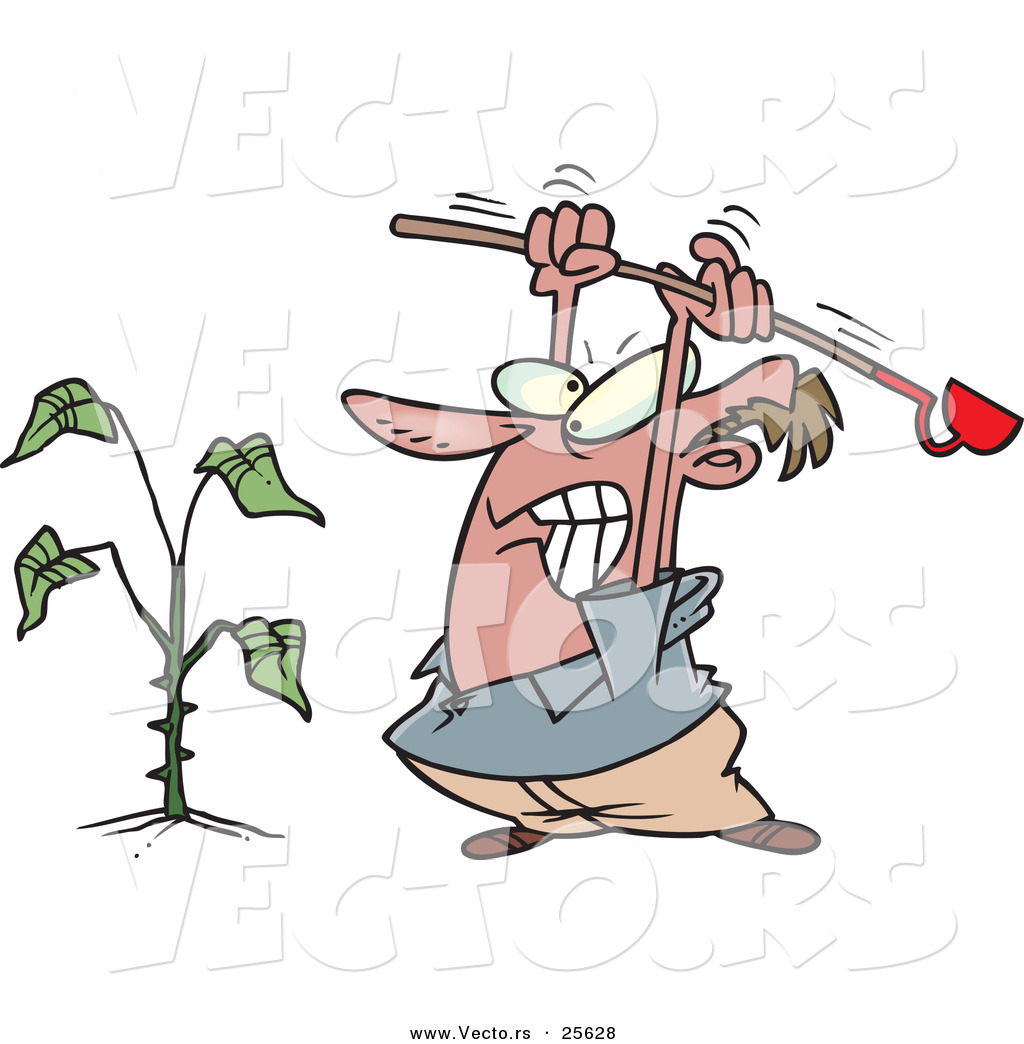 Vector of a Mad Cartoon Man Destroying a Weed with a Garden Hoe Tool ...