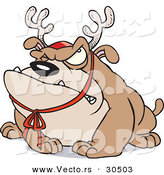Cartoon Vector of a Grumpy Bulldog Wearing Reindeer Antlers by Toonaday