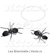 Vector of 2 Black Ants Talking Under a Text Bubble by Leo Blanchette