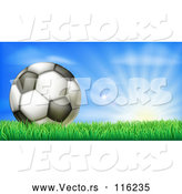 Vector of 3d Soccer Ball in Grass at Sunrise by AtStockIllustration