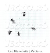 Vector of 5 Ants Crawling over Drawing of an Ant on Graph Paper by Leo Blanchette