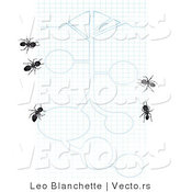 Vector of 5 Black Ants on Graph Paper with Blueprint Drawings by Leo Blanchette