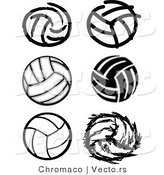 Vector of 6 Unique Volleyballs - Black and White by Chromaco