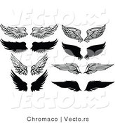 Vector of 8 Unique Feathered Wings - Black and White Designs by Chromaco