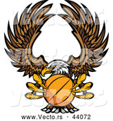 Vector of a Bald Eagle Flying with a Basketball Within Its Talons by Chromaco