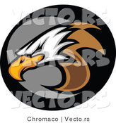Vector of a Bald Eagle Icon by Chromaco