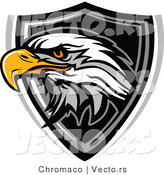Vector of a Bald Eagle over Badge by Chromaco