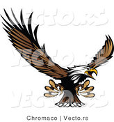 Vector of a Bald Eagle Reaching out with Claws While Flying by Chromaco