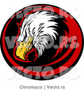 Vector of a Bald Eagle Within Red and Black Circle by Chromaco