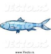 Vector of a Blue Sardine Fish by Zooco