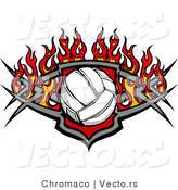 Vector of a Burning Volleyball over Shield Design by Chromaco