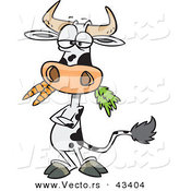 Vector of a Cartoon Cow Eating Carrots While Standing with His Arms Crossed by Toonaday