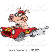 Vector of a Cartoon Pig Driving a Fast Hot Rod by Toonaday