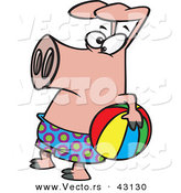 Vector of a Cartoon Pig Wearing Swim Shorts While Holding a Colorful Beach Ball by Toonaday