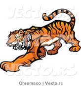 Vector of a Cartoon Tiger Slowly Stalking by Chromaco