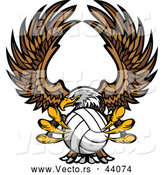 Vector of a Competitive Bald Eagle Mascot Flying with a Volleyball in Its Talons by Chromaco