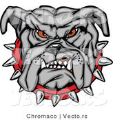 Vector of a Dominant Bulldog Mascot Growling with Intimidating Red Eyes and Spike Collar by Chromaco