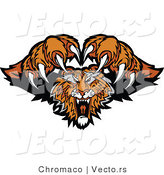 Vector of a Dominant Tiger Mascot Attacking with Fangs and Claws out by Chromaco
