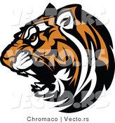 Vector of a Fierce Roaring Tiger Mascot by Chromaco