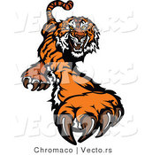 Vector of a Fighting Cartoon Tiger Mascot Striking Outwards with Claws by Chromaco