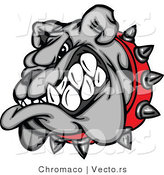 Vector of a Growling Cartoon Bulldog Mascot Wearing Spike Collar by Chromaco