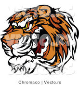 Vector of a Growling Tiger Preparing to Attack by Chromaco