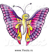 Vector of a Happy Cartoon Butterfly with Pink and Purple Wings and a Yellow Body by Zooco