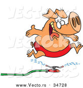 Vector of a Happy Pig Leaping over Water Sprinkler - Cartoon Design by Toonaday
