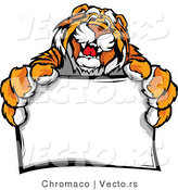 Vector of a Happy Tiger Mascot Holding a Blank Sign by Chromaco