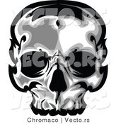 Vector of a Human Skull by Chromaco