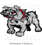 Vector of a Mean Gray Bulldog Mascot by Chromaco