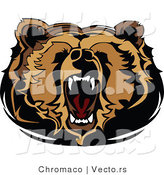 Vector of a Roaring Cartoon Bear Displaying Dominance by Chromaco