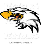Vector of a Screeching Bald Eagle by Chromaco