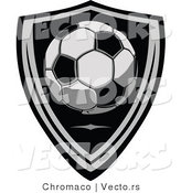 Vector of a Soccer Ball over a Shield by Chromaco