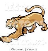Vector of a Stalking Cougar Preparing to Attack by Chromaco