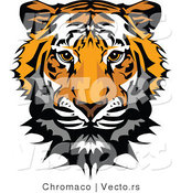 Vector of a Tiger Head Profile by Chromaco