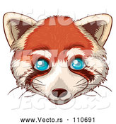 Vector of a Young Red Panda Bear Cat with Blue Eyes by Graphics RF