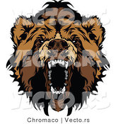 Vector of an Aggressive Cartoon Bear Snarling by Chromaco