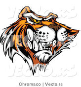 Vector of an Aggressive Cartoon Tiger Mascot Growling by Chromaco