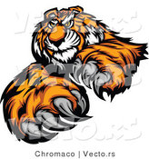 Vector of an Alpha Cartoon Tiger Mascot Grinning and Staring with Intimidating Eyes by Chromaco