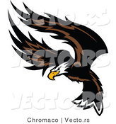 Vector of an American Bald Eagle Flapping Wings During Flight by Chromaco