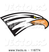 Vector of Bald Eagle Head by Johnny Sajem