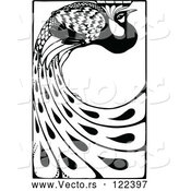 Vector of Black and White Peacock with Long Feathers by Prawny Vintage
