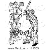 Vector of Black and White Woodcut Medieval Guy Swinging at a Snake Coiled Around His Leg in a Garden by Picsburg