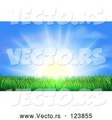 Vector of Bright Sun Shining over Green Grass by AtStockIllustration