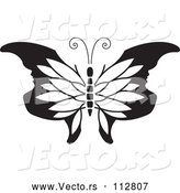 Vector of Butterfly with Petal Patterned and Face Tipped Wings - Black and White Version by Lal Perera