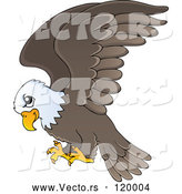 Vector of Cartoon Flying Bald Eagle by Visekart