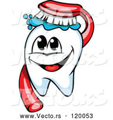 Vector of Cartoon Happy Tooth Mascot and Brush by Vector Tradition SM